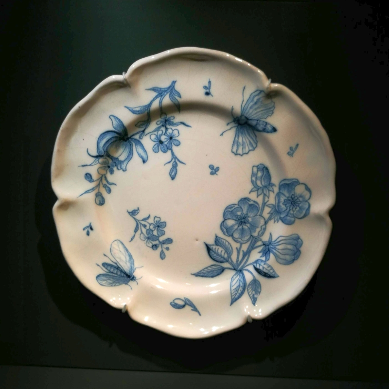 Museum-im-Wittelsbacher-Schloss-Friedberg-Fayence-Teller-mit-Insekten-und-Blumen 18. JH